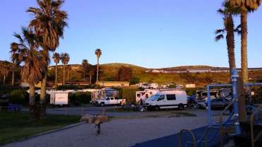 jalama-beach-campground-lompoc-ca-43