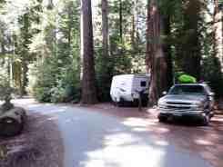 jedediah-smith-campground-12
