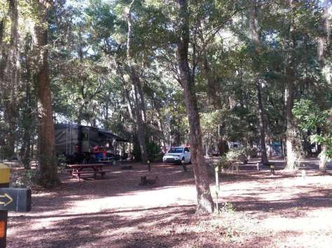 Jekyll Island Campground in Jekyll Island Georgia Shaded Sites