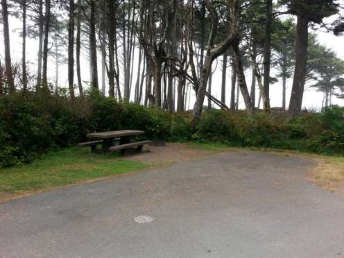 kalaloch-campground-olympic-national-park-11