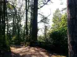 kayak-point-regional-park-stanwood-wa-15
