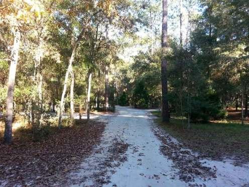 Kelly Park / Rock Springs in Apopka Florida Roadway