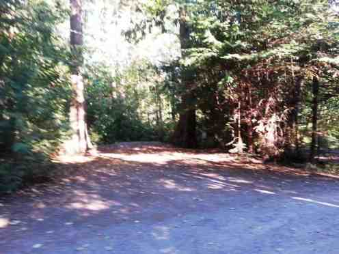la-conner-rv-campground-thousand-trails-05