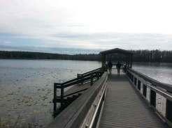 Lake Louisa State Park in Clermont Florida Lake