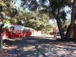 lilac-oaks-campground-california-10