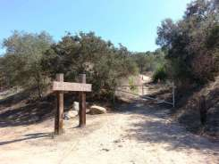 lilac-oaks-campground-california-12