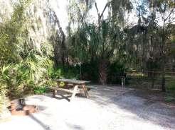 little-manatee-river-state-park-campground-wimauma-florida-sitepad