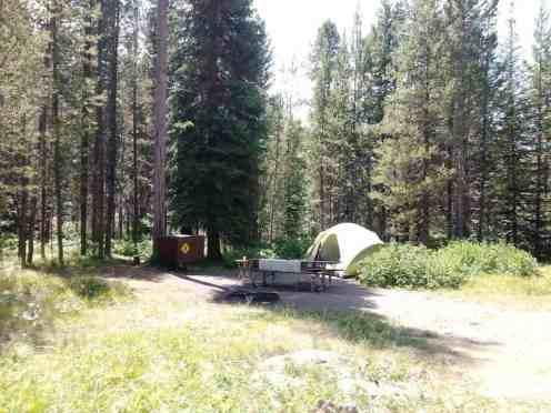 lizard-creek-campground-grand-teton-national-park-06