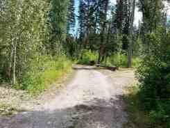 logging-creek-campground-glacier-national-park-04