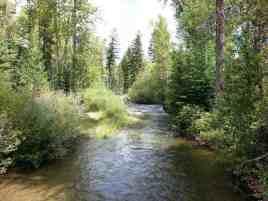 logging-creek-campground-glacier-national-park-14