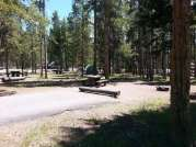 madison-campground-yellowstone-national-park-back-in