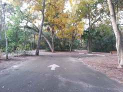 Magnolia Park Campground in Apopka Florida Roadway