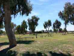 mayflower-county-park-campground-11