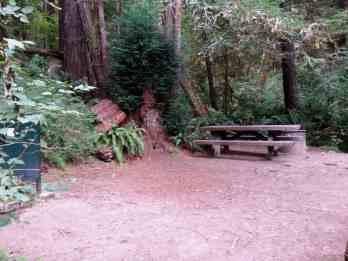 mill-creek-campground-redwoods-09