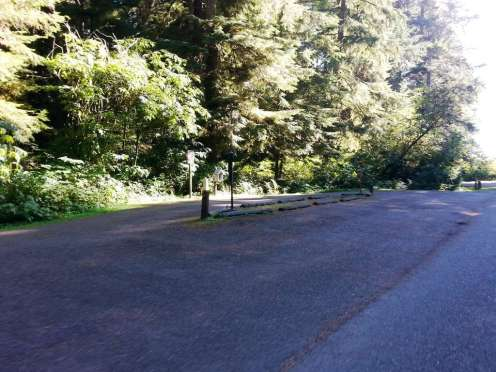 mora-campground-olympic-national-park-01