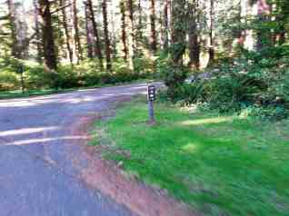 mora-campground-olympic-national-park-02