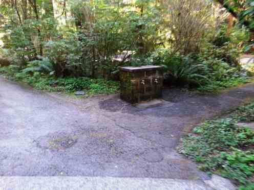 mora-campground-olympic-national-park-09