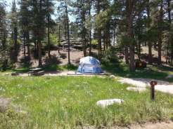 moraine-park-campground-rocky-mountain-national-park-tent-site-1