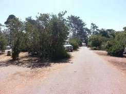 morro-bay-state-park-11