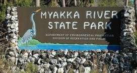 myakka-river
