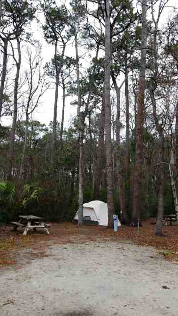 myrtle-beach-state-park-campground-myrtle-beach-sc-05