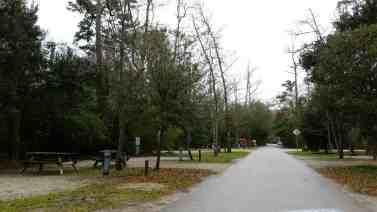 myrtle-beach-state-park-campground-myrtle-beach-sc-06