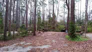 myrtle-beach-state-park-campground-myrtle-beach-sc-16
