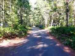 newhalem-creek-campground-north-cascade-national-park-09
