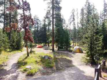 norris-campground-yellowstone-national-park-21