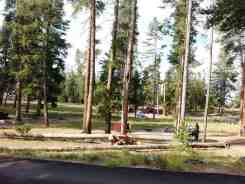 norris-campground-yellowstone-national-park-23