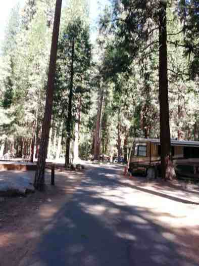 north-pines-campground-yosemite-national-park-06