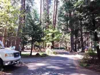north-pines-campground-yosemite-national-park-10