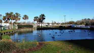 ocean-lakes-family-campground-myrtle-beach-sc-41 (1)
