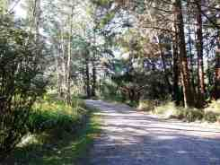 ozette-campground-olympic-national-park-07