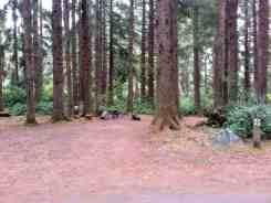 patricks-point-state-park-campground-trinidad-10