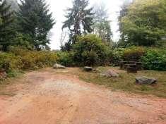 patricks-point-state-park-campground-trinidad-17