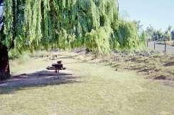 picnic-area