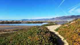 pismo-coast-village-pismo-beach-california-18