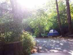 potlatch-state-park-campground-wa-6
