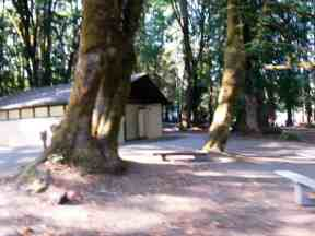 potlatch-state-park-campground-wa-7