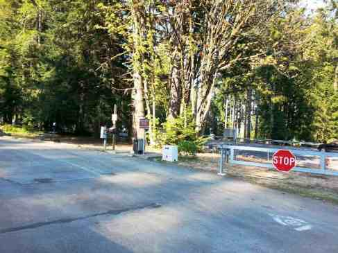 potlatch-state-park-campground-wa-8