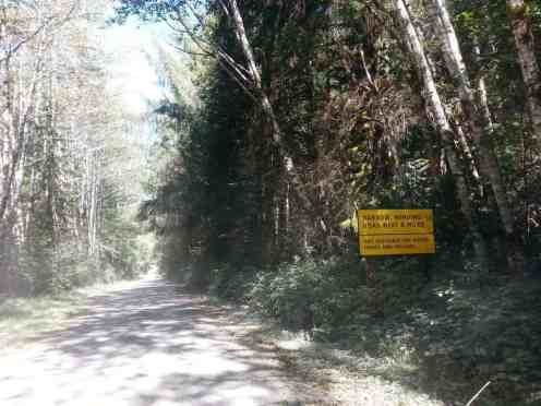 queets-campground-olympic-national-park-01