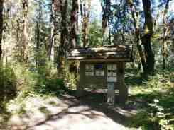 queets-campground-olympic-national-park-04