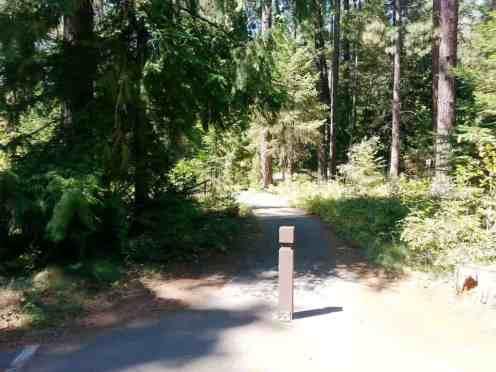 riley-creek-campground-idaho-18