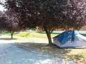 riverfront-park-campground-sedro-woolley-wa-04