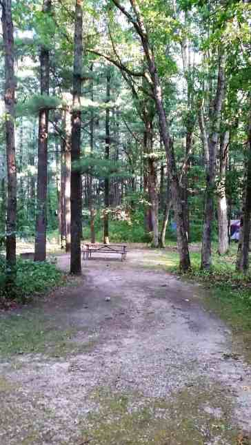 rocky-arbor-state-park-campground-wisconsin-dells-08