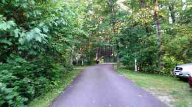 rocky-arbor-state-park-campground-wisconsin-dells-11