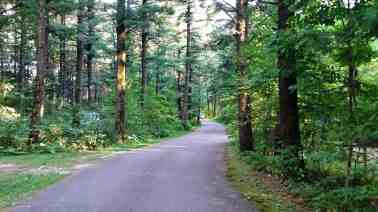 rocky-arbor-state-park-campground-wisconsin-dells-14