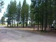 sawtelle-mountain-resort-island-park-idaho-picnis-trees