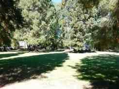 schroeder-park-campground-grants-pass-or-02